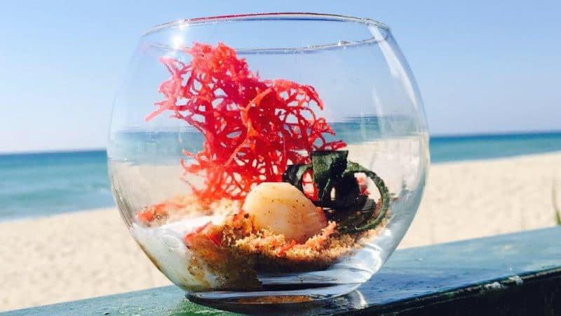 restaurante a pie de playa tarragona