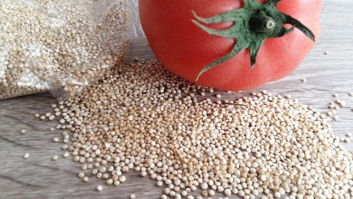 Quinoa, tomate y alcachofas