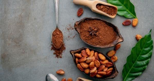 Cómo se procesa el cacao
